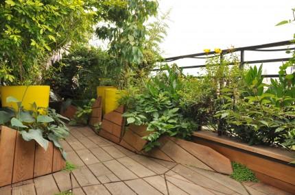 Trappes bois asymétriques et plantes - Atelier DLV