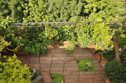 Terrasse asymétique design bois - Atelier DLV