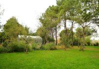 Serre, jardin potager, arbre fruitier, pinède, massif, graminée, Atelier DLV, DLV, paysagiste, paysagiste concepteur