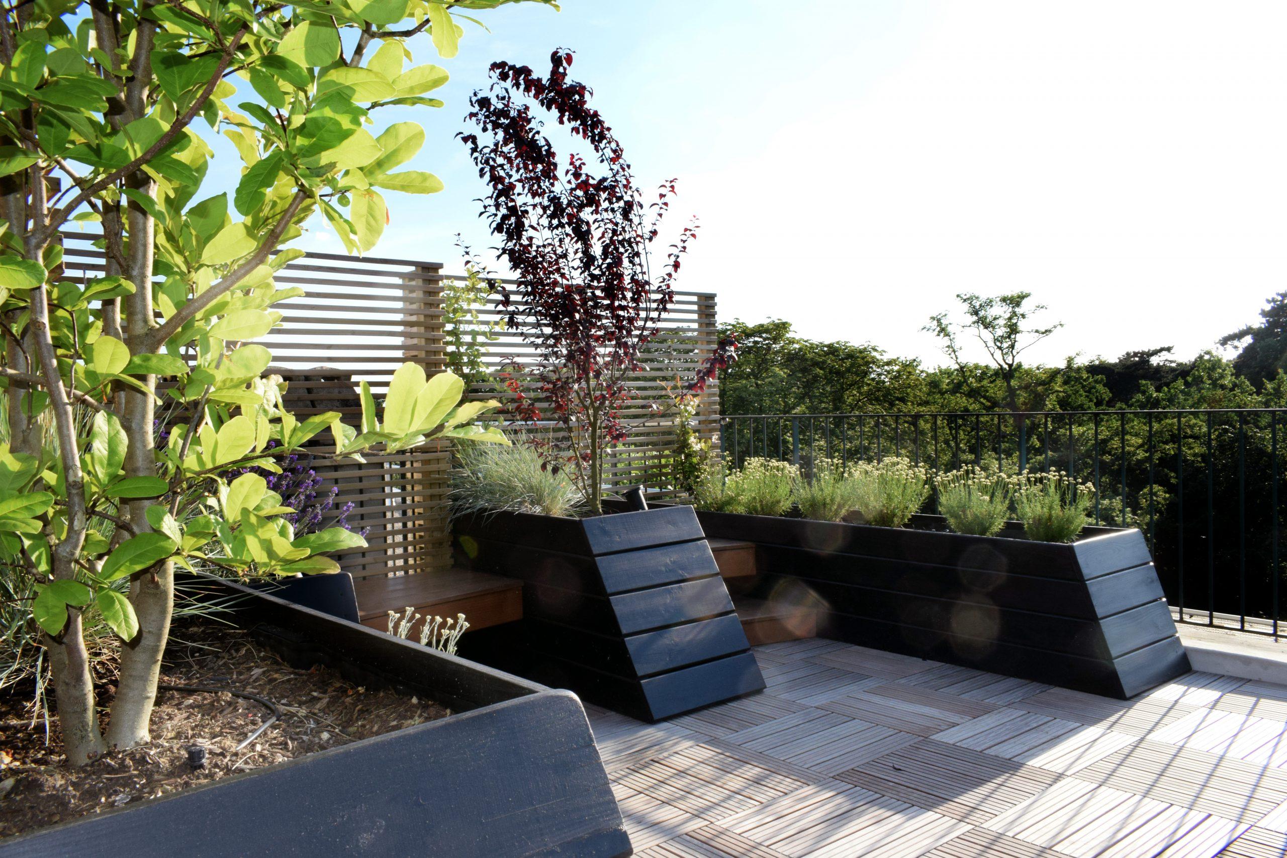 Rooftop_Nogent sur Marne